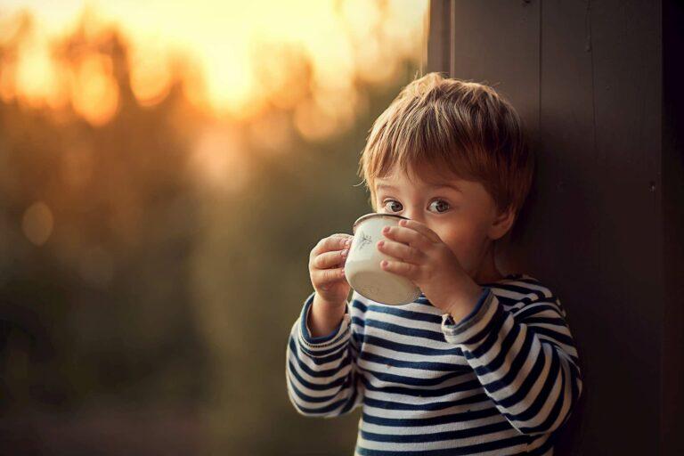 Quali sono gli alimenti ricchi di ferro più adatti per i bambini?